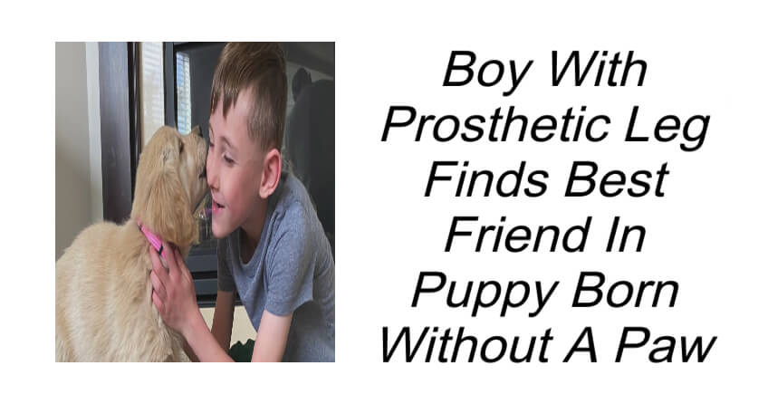 Boy With Prosthetic Leg Finds Best Friend In Puppy