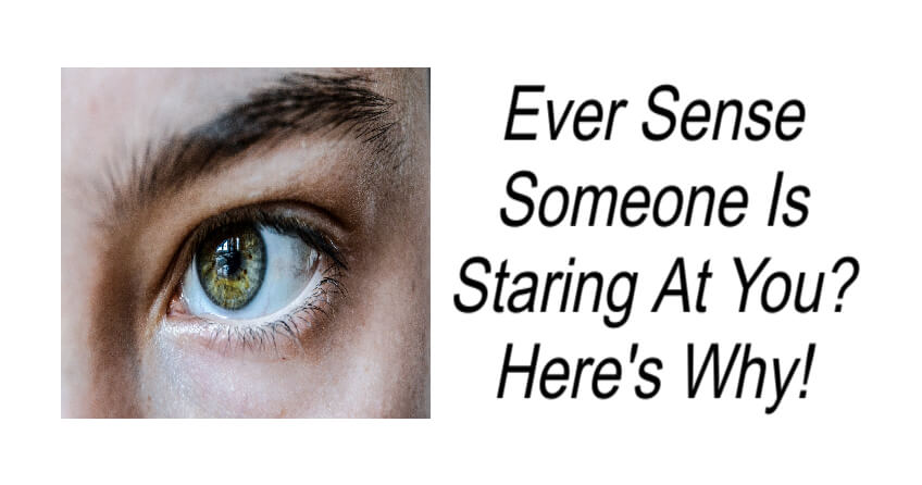 Ever Sense Someone Is Staring At You?