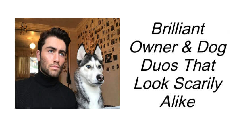 Brilliant Owner & Dog Duos That Look Scarily Alike